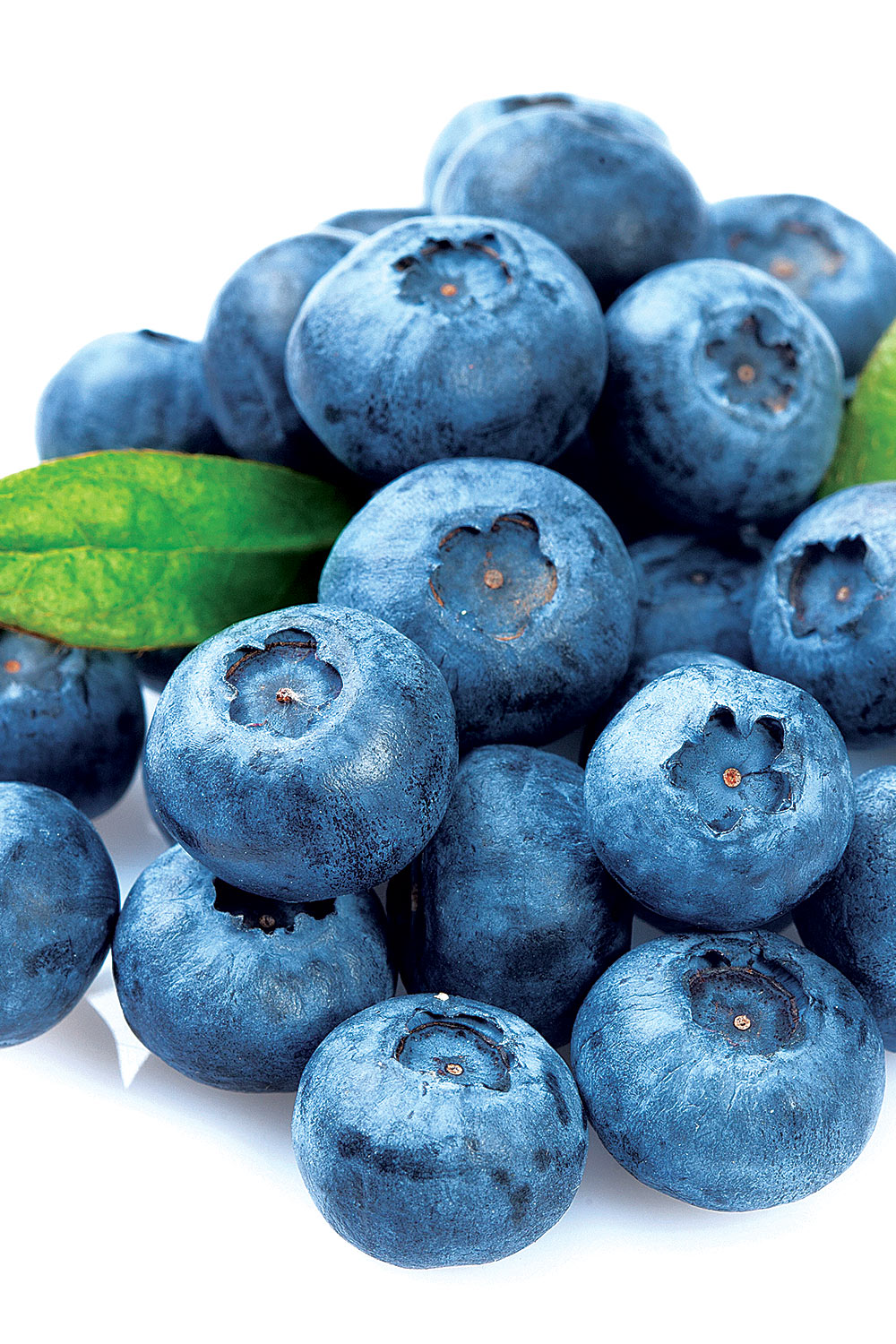 Pickled Blueberries - Fresh On The Menu Recipe
