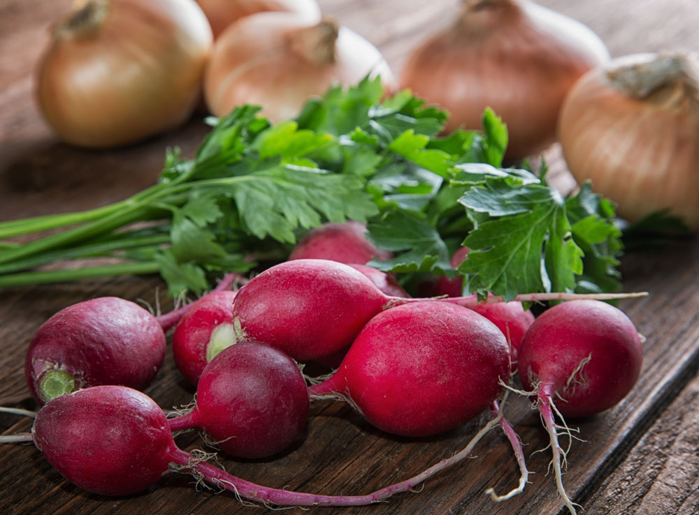 Spring Radish Salad - Fresh On The Menu Recipe